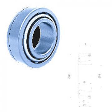 Bearing U298/U261L Fersa